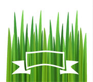 Grass background with badge Royalty Free Stock Photos