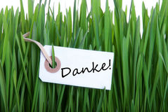 Grass Background with Danke Royalty Free Stock Images