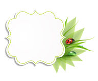 Grass background, frame with leaves Stock Image