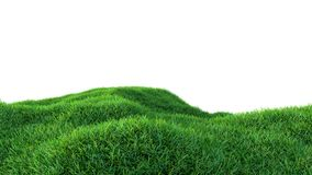 Grass background, fresh green fields, isolated Stock Photos