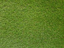 Grass background. Fresh lawn grass texture. Perfect green grass. Carpet. Grass backdrop for your design Royalty Free Stock Images