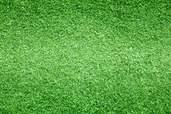 Grass Background Golf Courses Green Lawn Stock Photo
