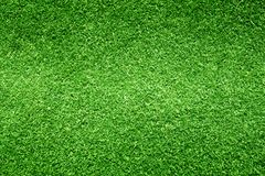 Grass background Golf Courses green lawn. Pattern textured background Royalty Free Stock Photos