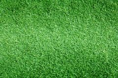 Grass background Golf Courses green lawn. Pattern textured background Royalty Free Stock Photography
