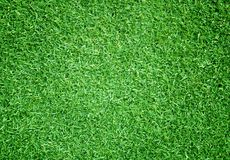 Grass background golf courses green lawn. Pattern textured background Royalty Free Stock Image