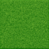 Grass background made in . Royalty Free Stock Photo