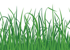 Grass background with seamless edge. Seamless grass pattern. Vector illustration Stock Photos