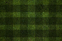 Grass background Royalty Free Stock Photos