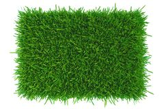 Grass background texture. fresh grass. 3d rendering. Grass background texture. fresh grass. 3d rendering stock illustration