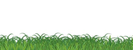 Grass Background Weeds Vector. Isolated Green Lawn Field Poster Art Drawing Fun vector illustration