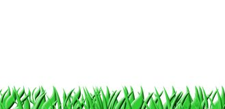 Grass background on white Royalty Free Stock Photo