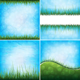 Grass backgrounds Stock Photography