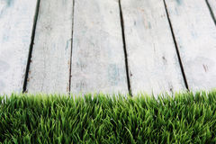 Grass backgrpund. Grass and wood seasonal background Royalty Free Stock Photo