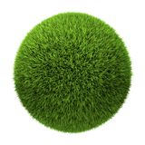 Grass Ball. Isolated on white background, 3d render Royalty Free Stock Images