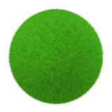 Grass ball Stock Photography