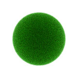 Grass ball Royalty Free Stock Photos