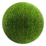 Grass ball Stock Photo