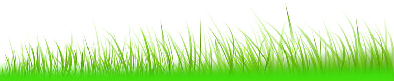 Grass-banner Royalty Free Stock Images