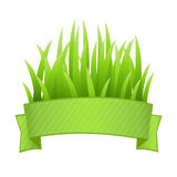 Grass Banner. Grass Set, Isolated On White Background, Vector Illustration Stock Photo