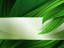 Grass banner Stock Photography