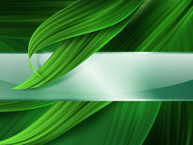 Grass banner Royalty Free Stock Photos