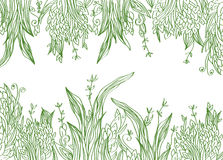 Grass banner artistic illustration Stock Photo