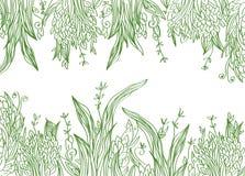 Grass banner artistic illustration Stock Photo
