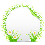 Grass banner. Stock Photography