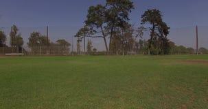 Grass in baseball field stock footage