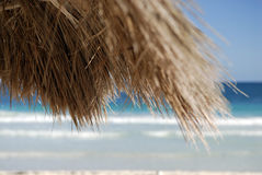 Grass beach hut roof. A closeup view of a corner of a grass roof or covering on a beach cabana or hut Royalty Free Stock Image