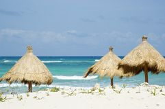 Grass Beach Umbrellas. On Mexican Beach royalty free stock images