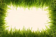 Grass on a beige wooden texture Stock Photo