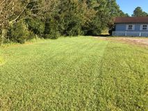 Grass being cut. View of half of the grass in the yard being cut. Stripes can be seen on the left where the mower tires left their marks. Chore that needs done royalty free stock photo