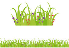 Grass & berry seamless vector pattern  background Stock Photos