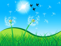 Grass Birds Shows Dandelion Seeds And Countryside Stock Photo