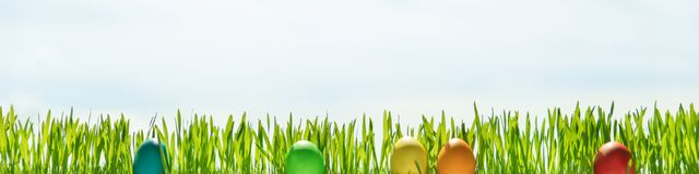 Grass blades and easter eggs in front of blue sky, header. With copyspace Royalty Free Stock Photography