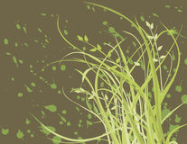 Grass and blots Stock Photo