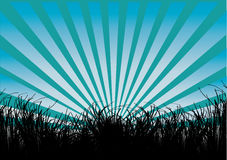 Grass and blue rays Royalty Free Stock Images