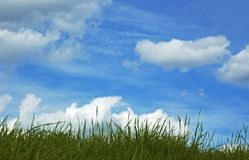 Grass and blue sky Royalty Free Stock Image