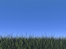 Grass and blue sky - 3D render Royalty Free Stock Images