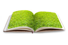 Grass book. Isolate on white background Stock Photography