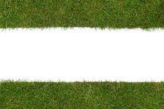 Grass border. Border of real grass isolated on a white background Stock Photography
