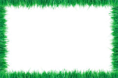 Grass Border Royalty Free Stock Photography