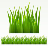 Grass border. Grass green border.(can be repeated and scaled in any size Stock Photography