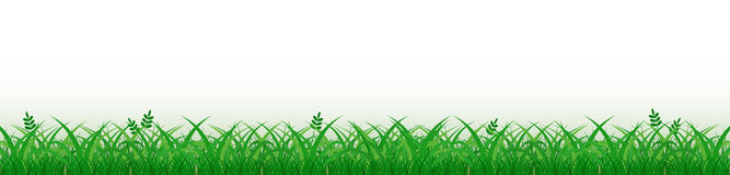 Grass border Royalty Free Stock Photos