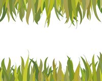 Grass border Royalty Free Stock Image