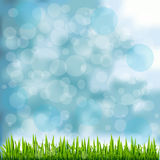 Grass Border On Natural Blue Background Royalty Free Stock Image
