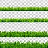 Grass Border Set. Vector Illustration Stock Photography