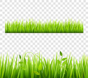 Grass Border Tileable Transparent Royalty Free Stock Photos