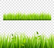 Grass Border Tileable Transparent Royalty Free Stock Photos